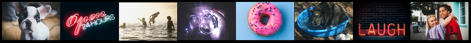 piglix.com